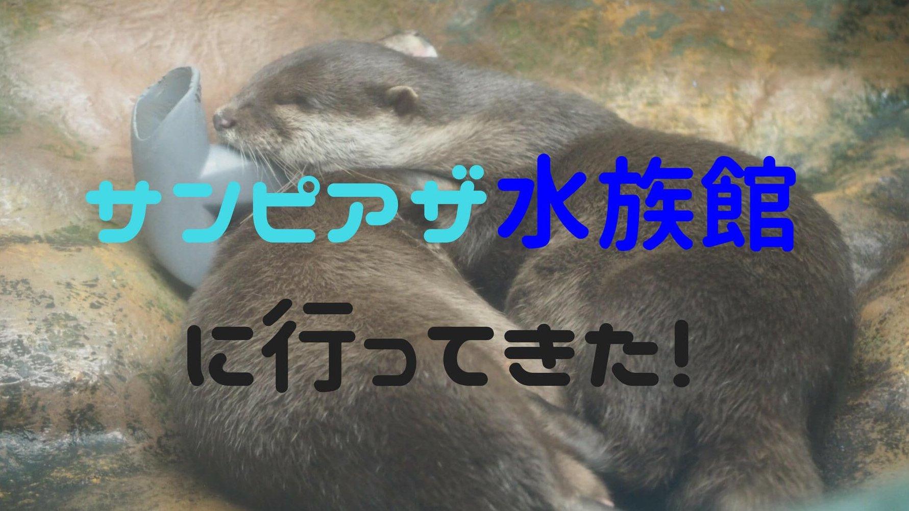 サンピアザ水族館はカワウソのふれあいタイムなど個性的なイベント満載!【新札幌】