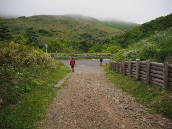 礼文島の林道