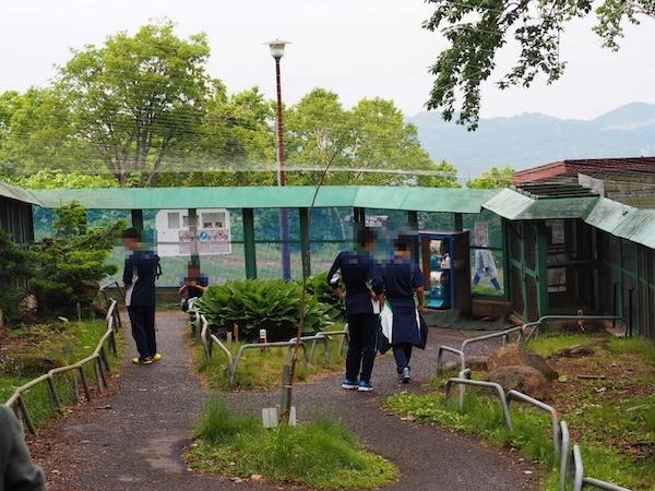 小樽天狗山のシマリス公園内の様子