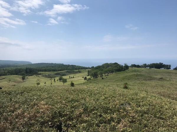 知床五湖の高架木道からの景色