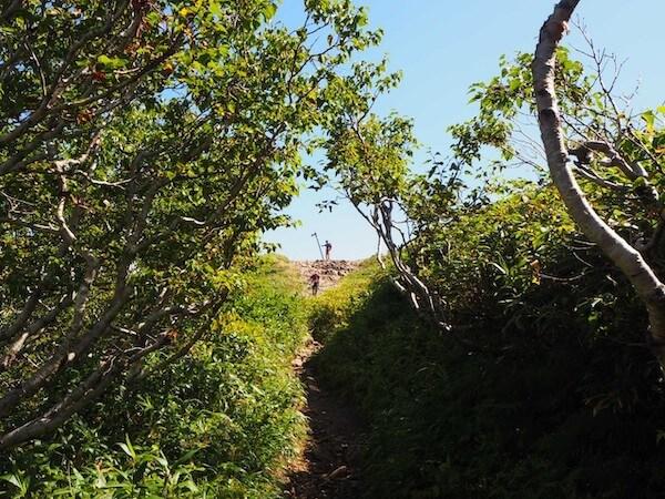 ニセコアンヌプリの登山道の山頂付近