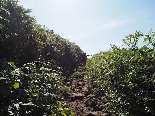ニセコアンヌプリの登山道